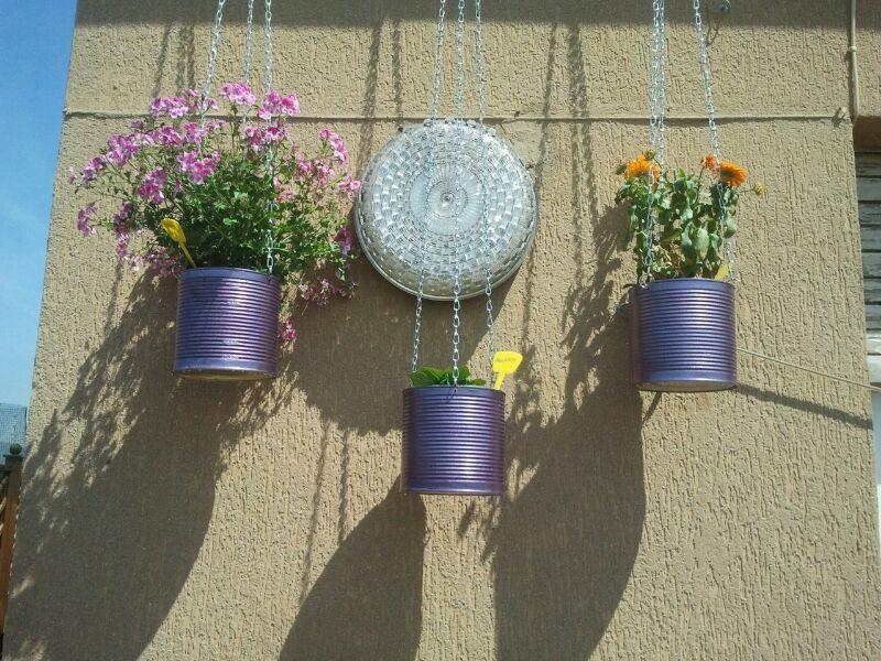 Come organizzare al meglio gli spazi nell\'orto sul balcone   Verde ...