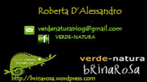 Cesena: dal 21 al 23 ottobre con Manualmente. Per noi Roberta D'Alessandro