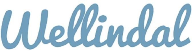 Nuova collaborazione con Wellindal
