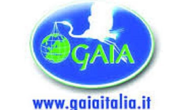 #collaborazionicrueltyfree Vi presentiamo l'associazione Gaia, animali e ambiente